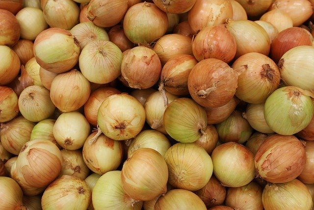 onion-5318951_640.jpg