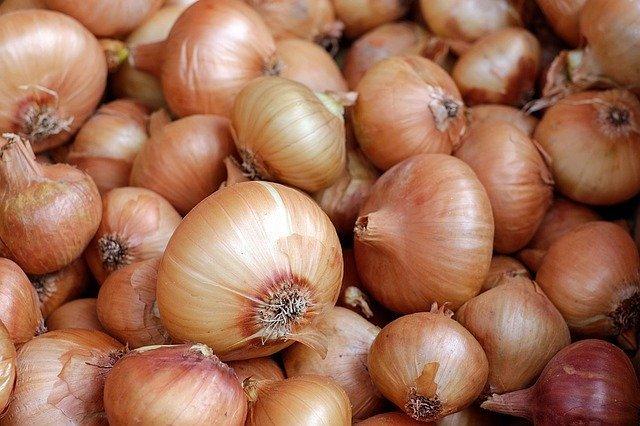 onions-1397037_640.jpg